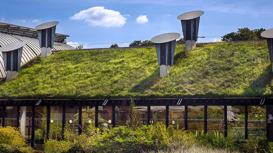10 Steps to Building Eco-Friendly